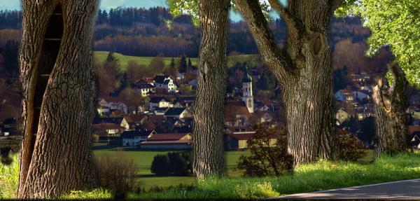 Gasthaus-Ruf-Heimatrauschen